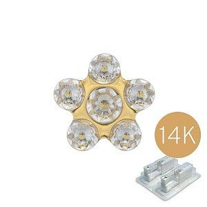 Daisy Kristall, 14K Gelbgold, 5 mm